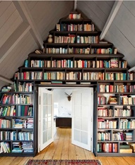 dream bookshelves